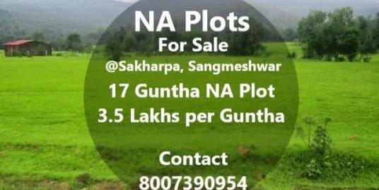 17 Guntha NA Plot @Sakharapa
